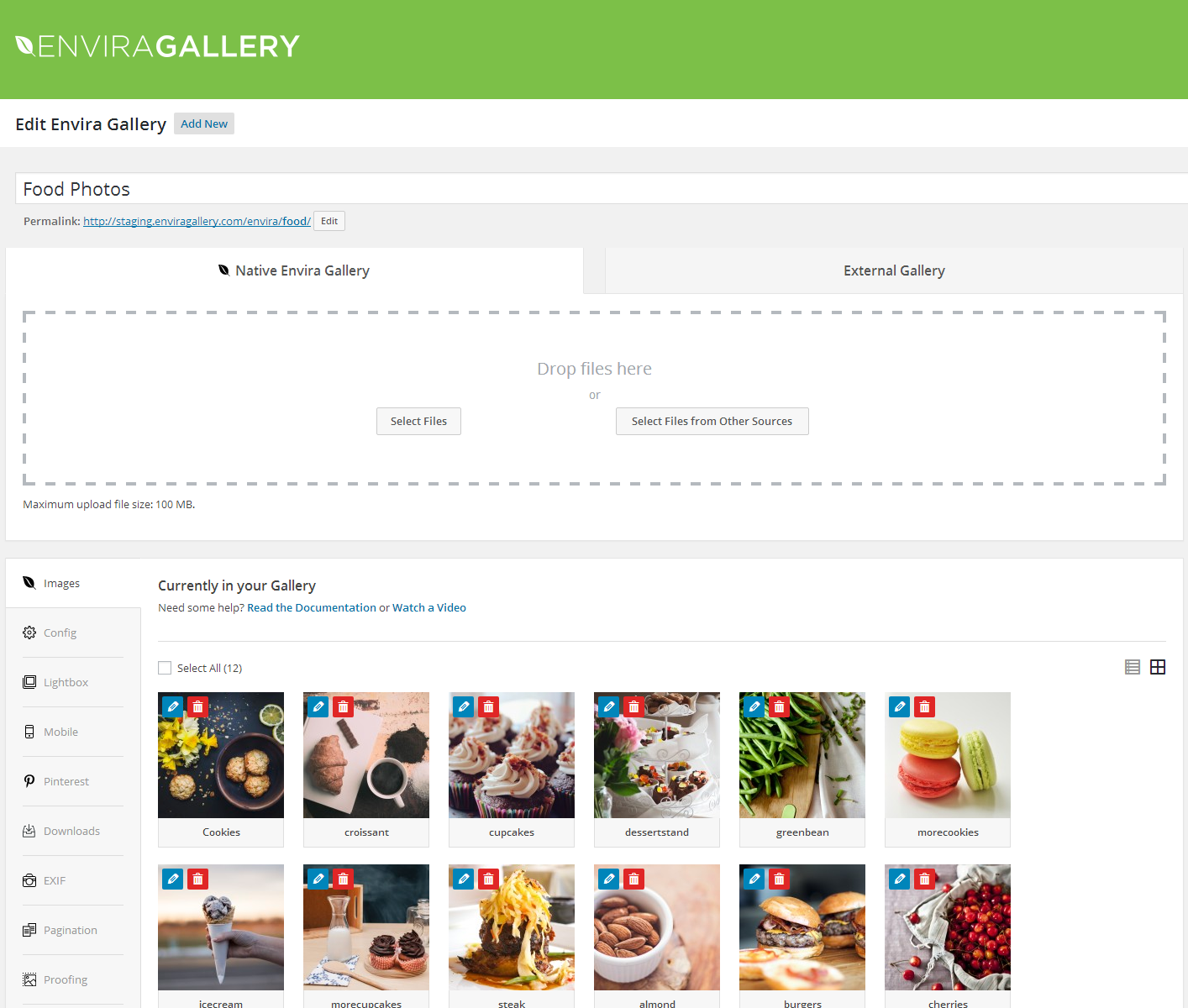 Download Photo Gallery by Envira – Responsive Image Gallery for WordPress 1.6.2 – Free WordPress Plugin