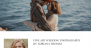Download PhotoFrame 1.0.2 – Free WordPress Theme