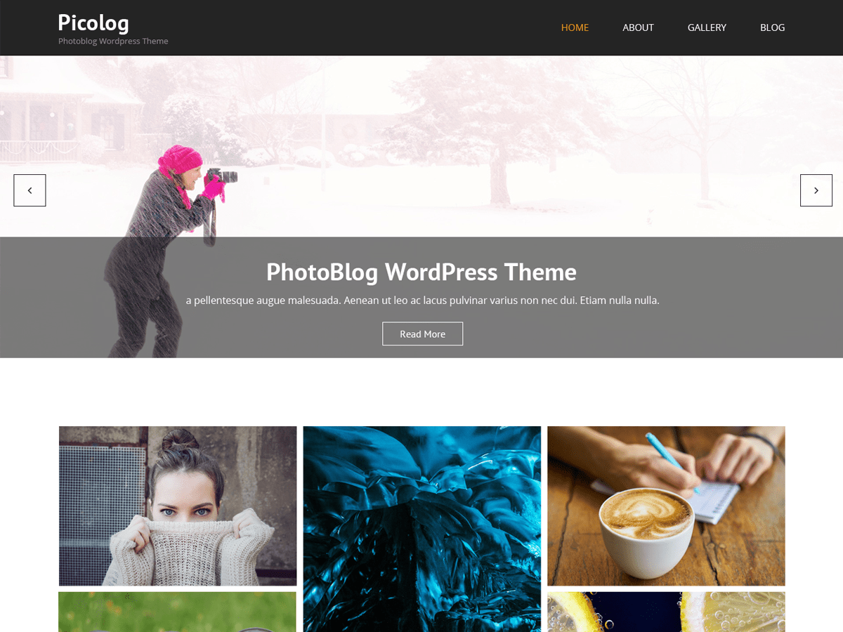 Download Picolog 1.0.3 – Free WordPress Theme