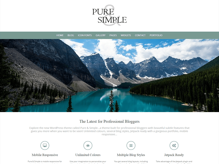 Download Pure & Simple 3.1.0 – Free WordPress Theme