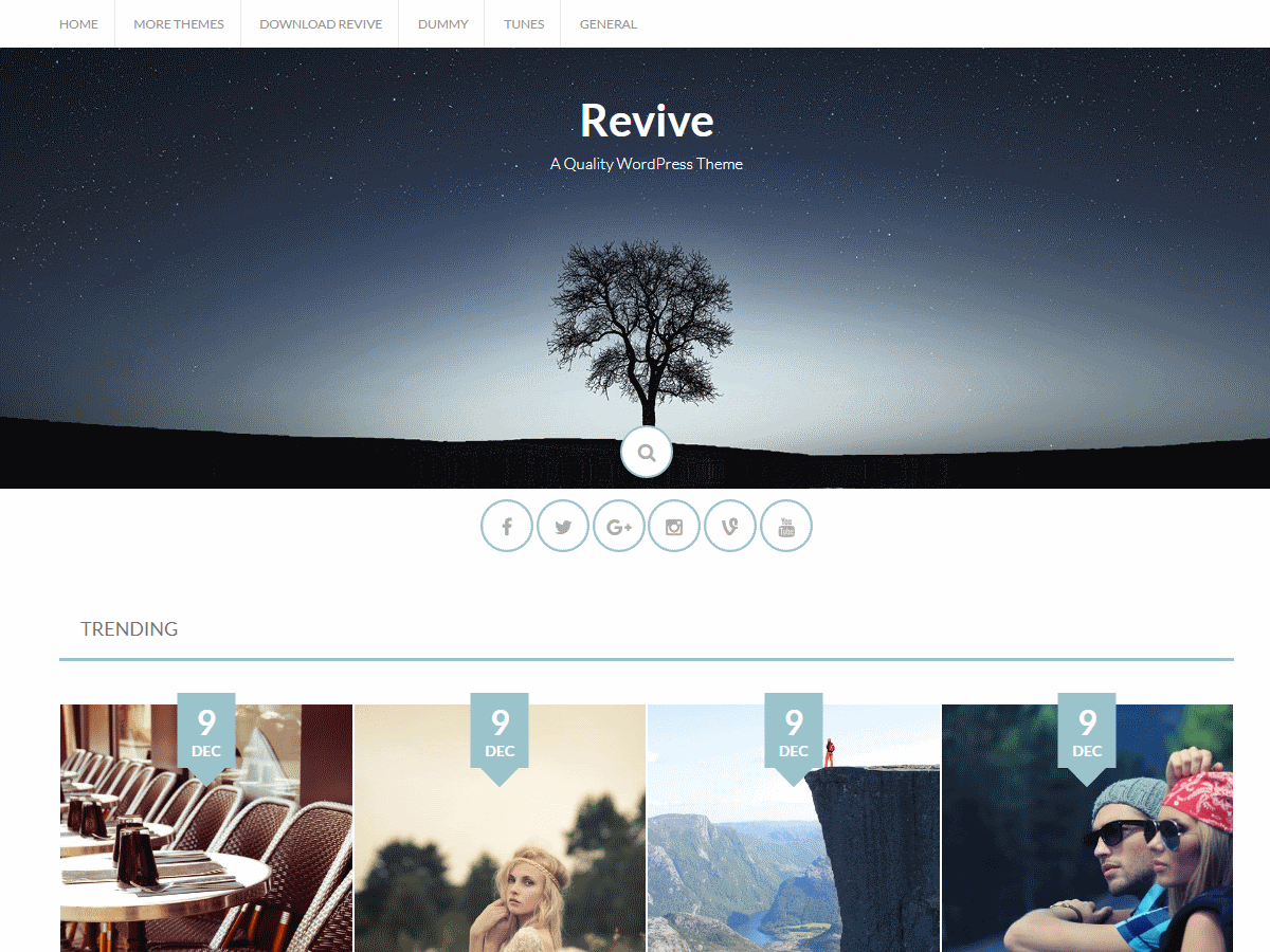 Download Revive 1.2.2 – Free WordPress Theme