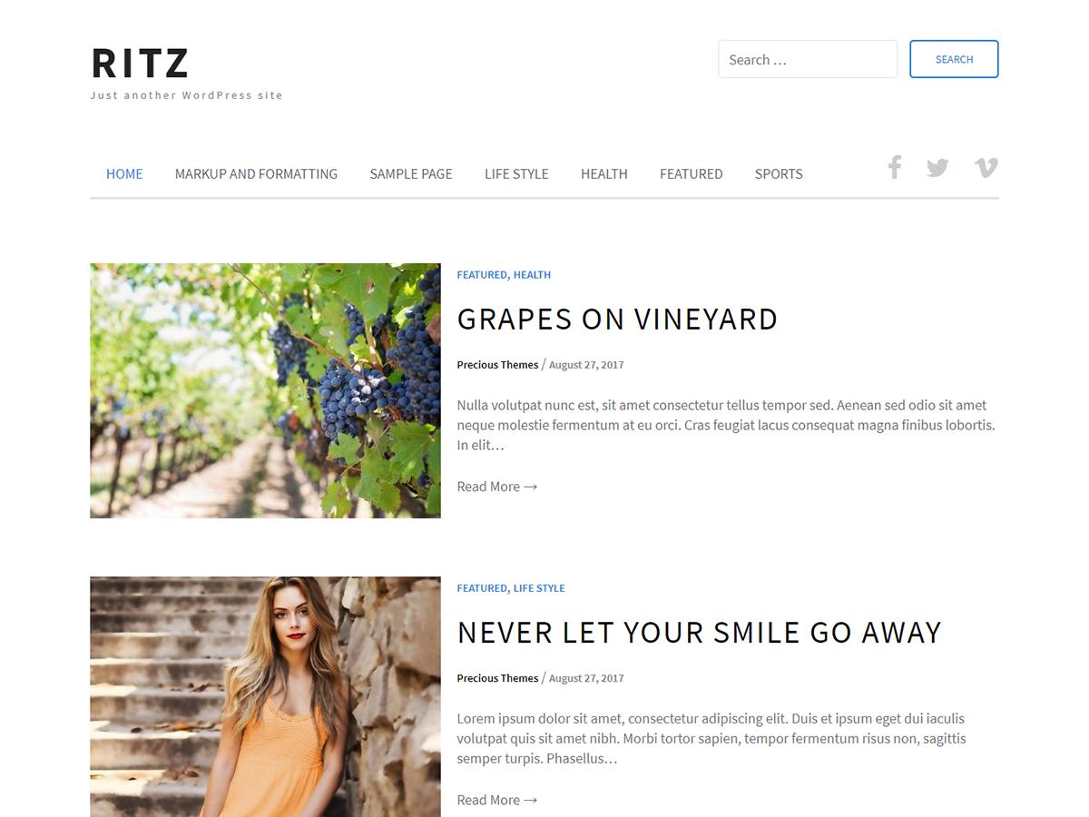 Download Ritz 1.0.5 – Free WordPress Theme