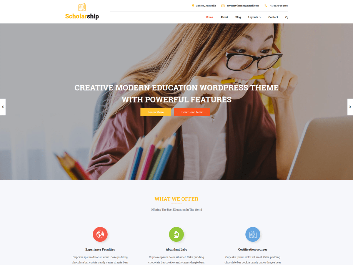 Download Scholarship Lite 1.0.1 – Free WordPress Theme