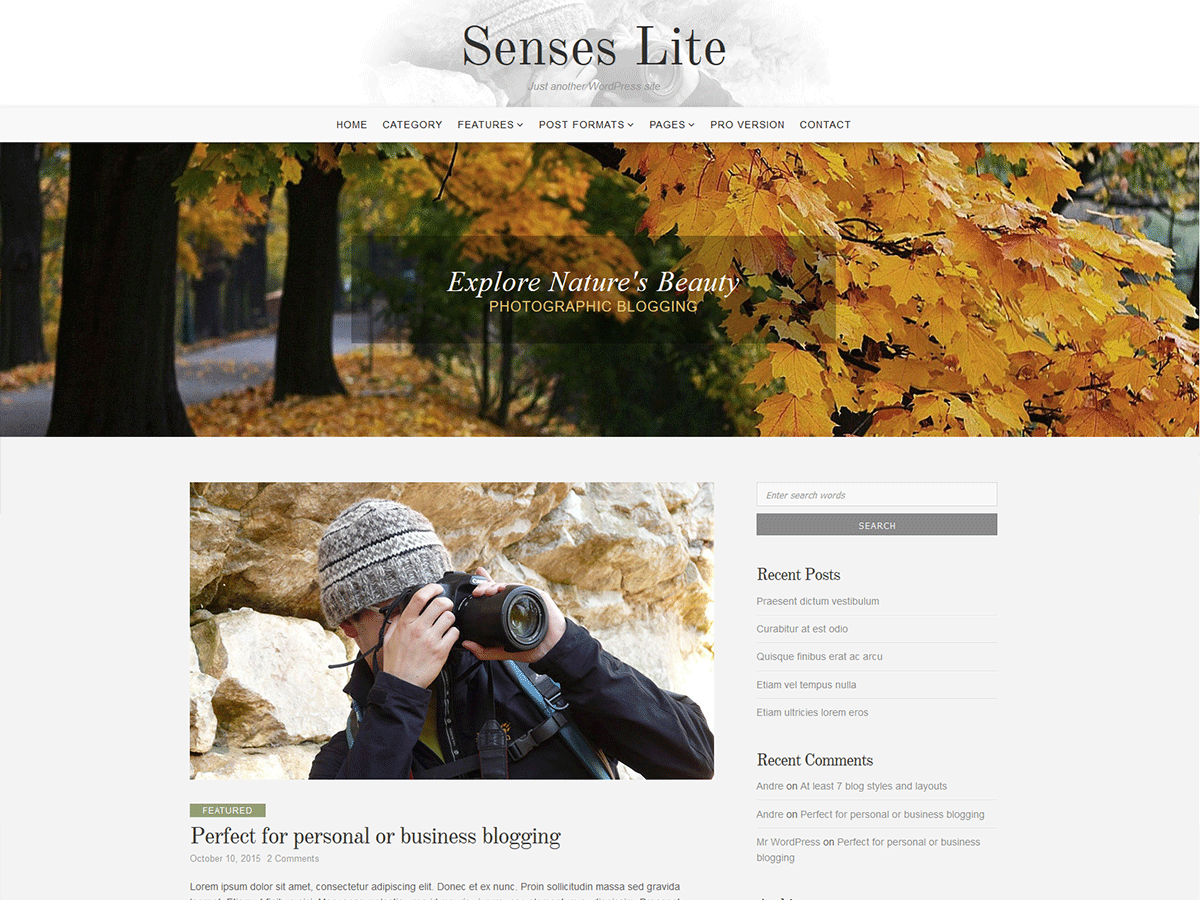 Download Senses Lite 1.1.0 – Free WordPress Theme