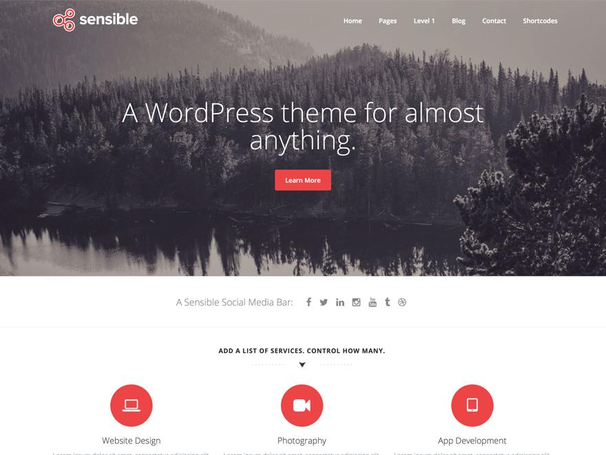 Download Sensible WP 1.2.8 – Free WordPress Theme