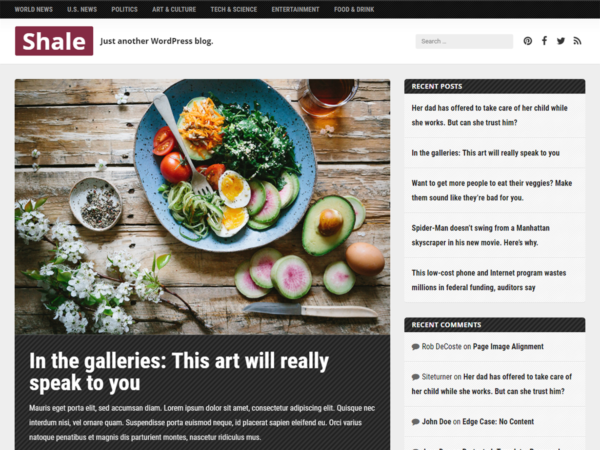 Download Shale 1.2.4 – Free WordPress Theme