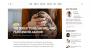 Download Shamrock 1.1 – Free WordPress Theme