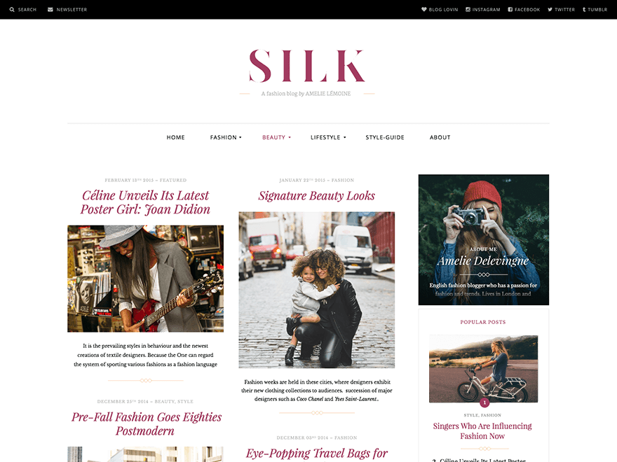 Download Silk Lite 1.2.9 – Free WordPress Theme