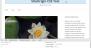 Download SiteOrigin CSS 1.2.3 – Free WordPress Plugin