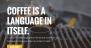 Download Stout 1.1.4 – Free WordPress Theme