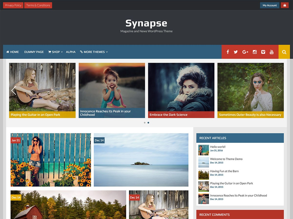 Download Synapse 1.2.2 – Free WordPress Theme