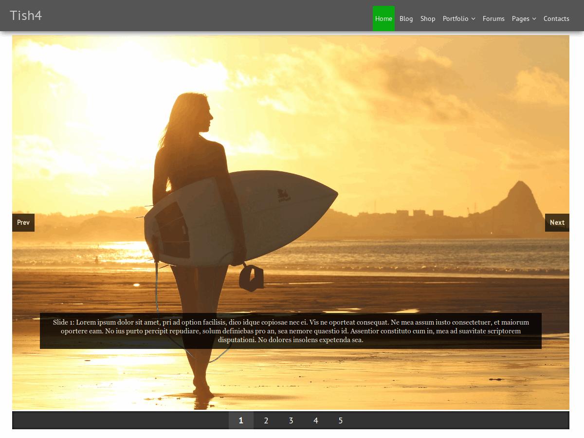 Download Tish4 1.0.3 – Free WordPress Theme