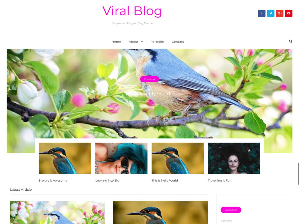 Download Viral Blog 1.0.4 – Free WordPress Theme
