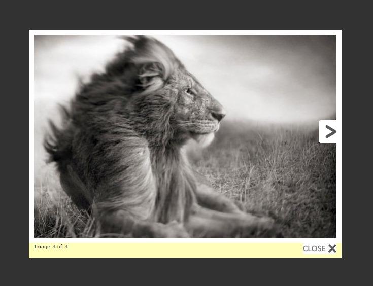 Download WP Lightbox 2 3.0.6.2 – Free WordPress Plugin
