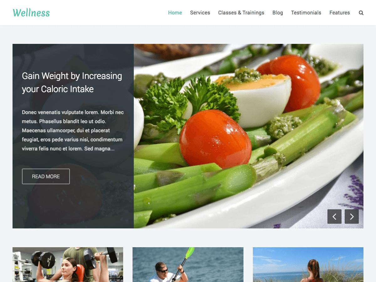 Download Wellness 1.2.1 – Free WordPress Theme