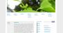 Download Yoko 1.2.3 – Free WordPress Theme
