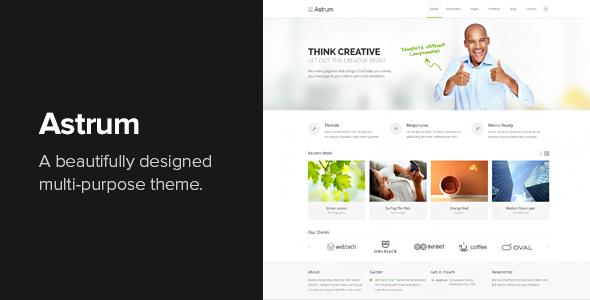 Download Astrum v.3.0.3 - Responsive Multi-Purpose WordPress Theme Free