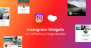 Download Instagram Feed Gallery for WPBakery Page Builder (Visual Composer)  - Free Wordpress Plugin