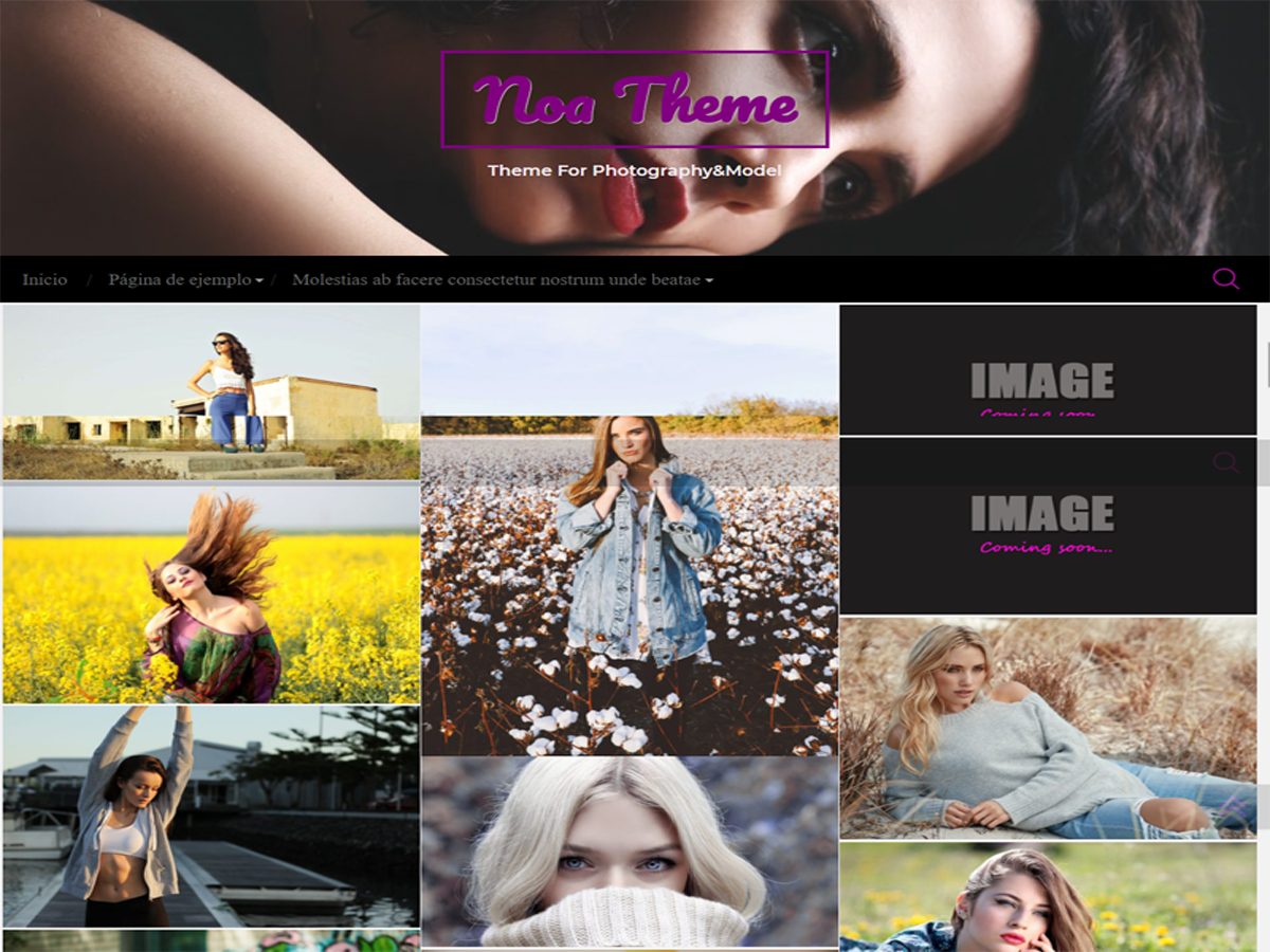 Download noa 1.2.8 – Free WordPress Theme