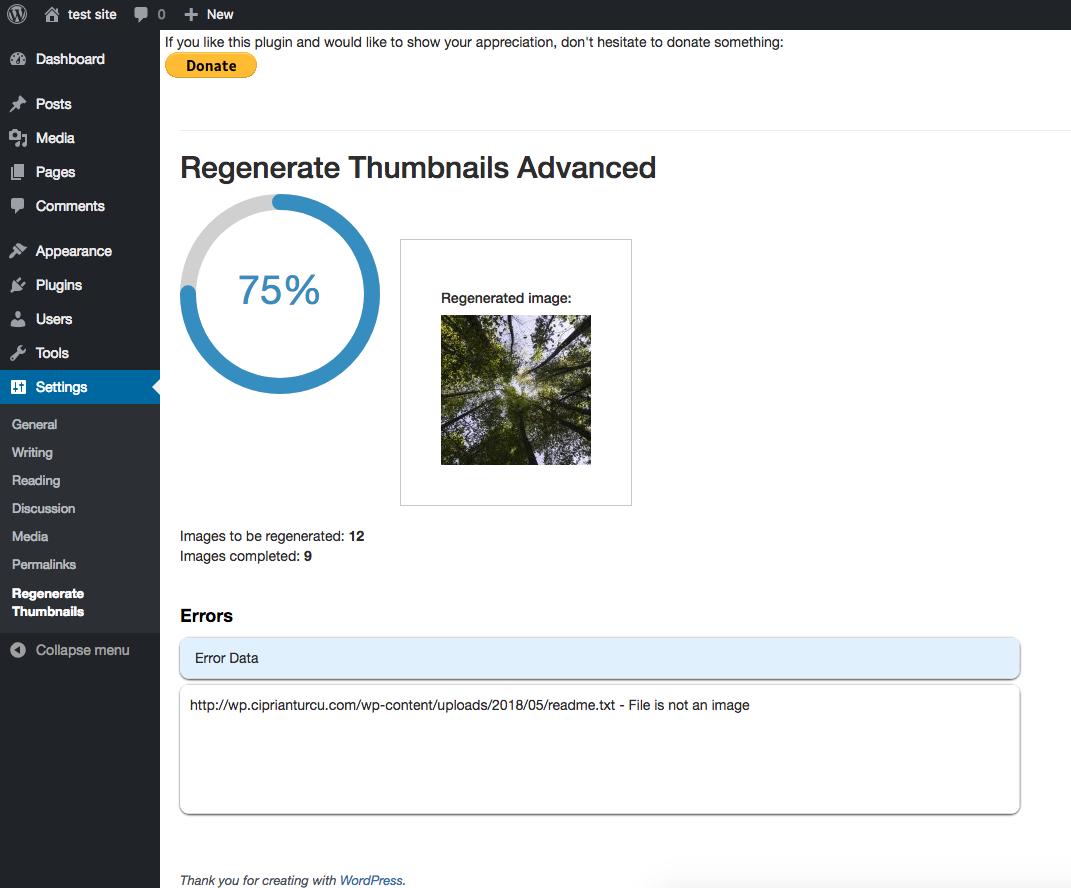 Download reGenerate Thumbnails Advanced 1.6.3.2 – Free WordPress Plugin